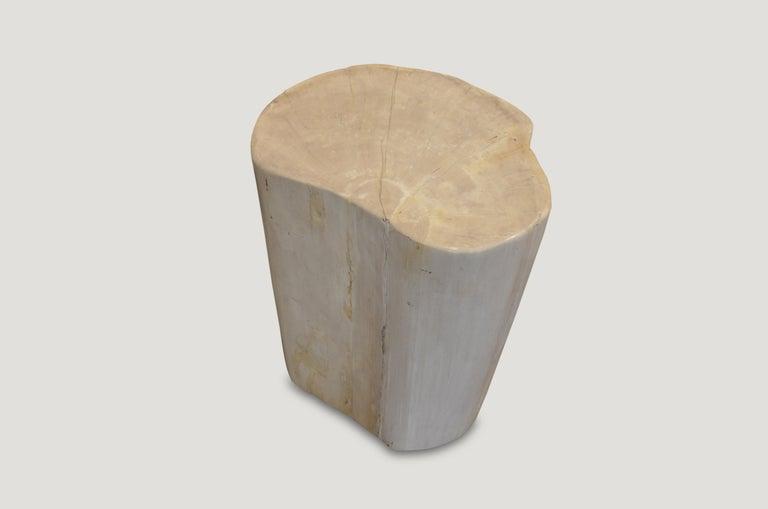 White and cream natural tones on this super smooth petrified wood side table or stool.