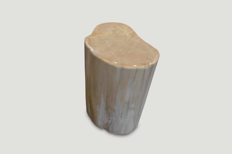 Organic Modern Andrianna Shamaris White Petrified Wood Side Table or Stool For Sale
