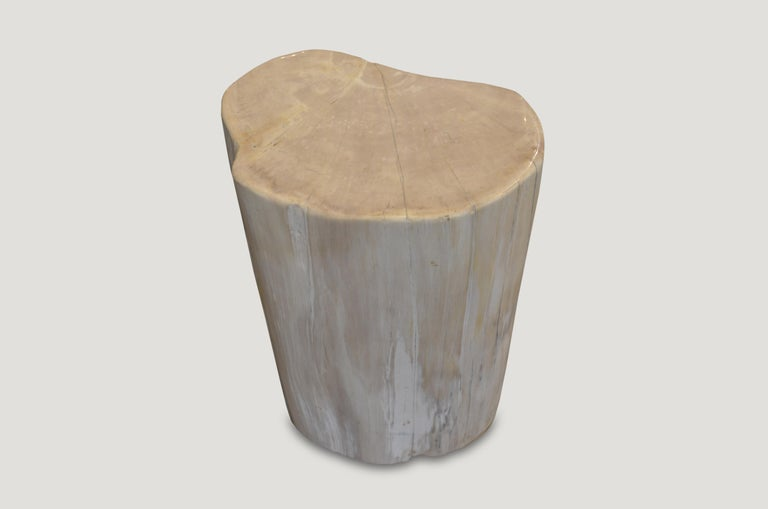 Andrianna Shamaris White Petrified Wood Side Table or Stool In Excellent Condition For Sale In New York, NY