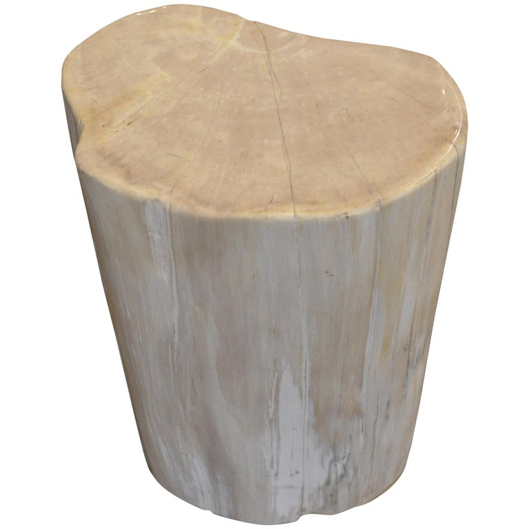 Andrianna Shamaris White Petrified Wood Side Table or Stool For Sale