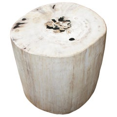 Andrianna Shamaris White with Black Super Smooth Petrified Wood Side Table