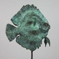 Discus Fish - Wildlife bronze sculpture limited edition Modern Contemporary