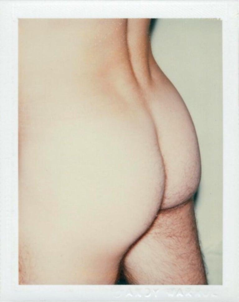 Andy Warhol Nude Photograph - Nude Model
