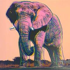 African Elephant II.293