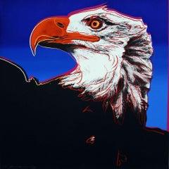 Bald Eagle (FS II.296)
