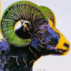 Big Horn Ram, from Endangered Species