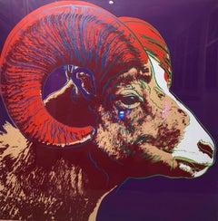 Bighorn Ram TP (FS II.302)