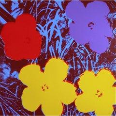 Flowers #71 (Sunday B. Morning)