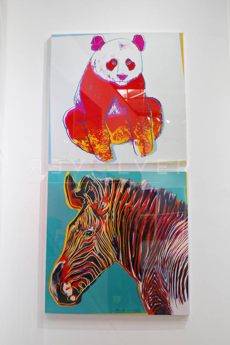 Warhol created his Endangered Species portfolio of ten, brightly colored screenprints in 1983. He was commissioned by his friends Ron and Freyda Feldman to create the portfolio to raise awareness. Both Ron and Freyda were dedicated philanthropists