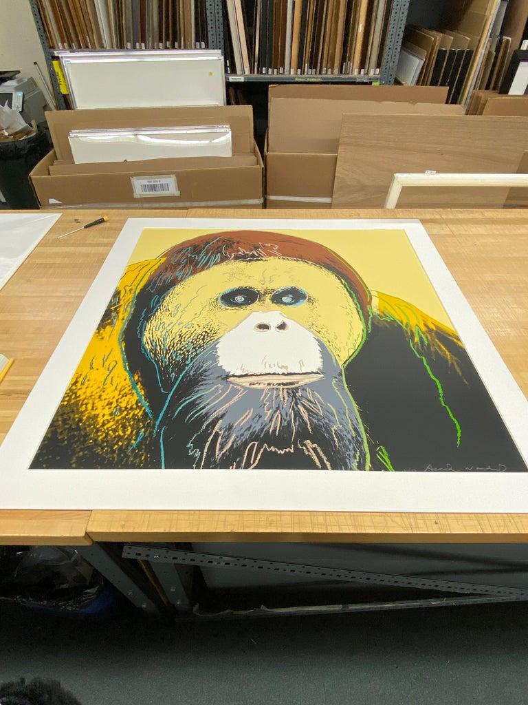 Orangutan, Endangered Species F&S II.299 - Contemporary Print by Andy Warhol