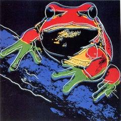 Pine Barrens Tree Frog (FS II.294)