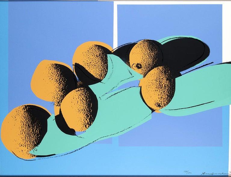 Andy Warhol Figurative Print - Space Fruit: Still Lifes - Cantaloupes I,  Screen Print