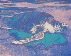 Turtle FS II.360