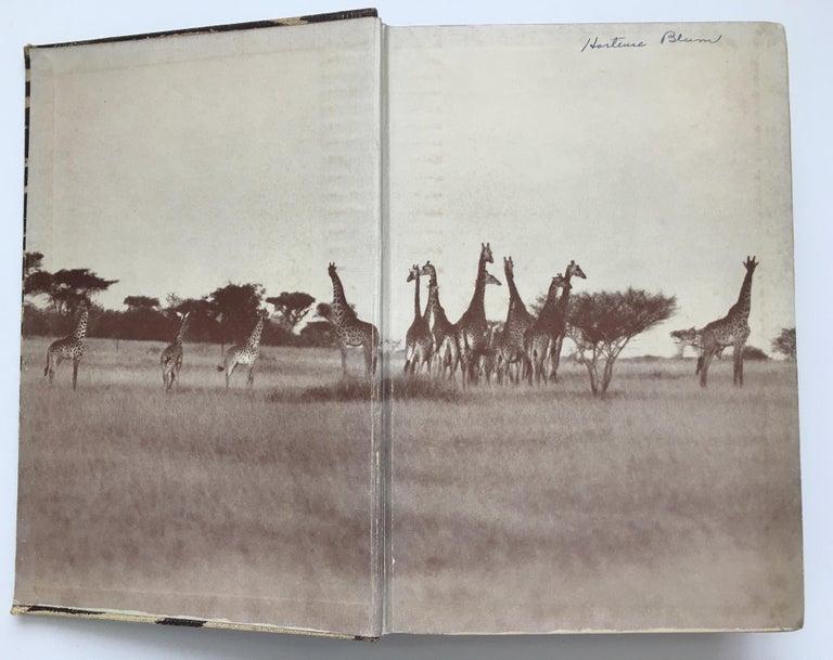 Animal Print Safari Book, I Married Adventure by Osa Johnson For Sale 2