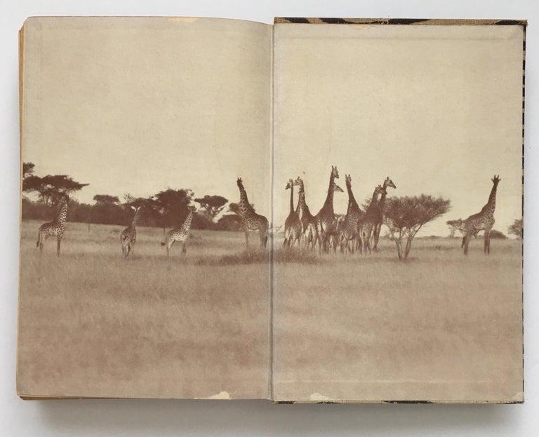 Animal Print Safari Book, I Married Adventure by Osa Johnson For Sale 3