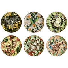 Animalia, Six Contemporary Porcelain Dinner Plates with Decorative Design