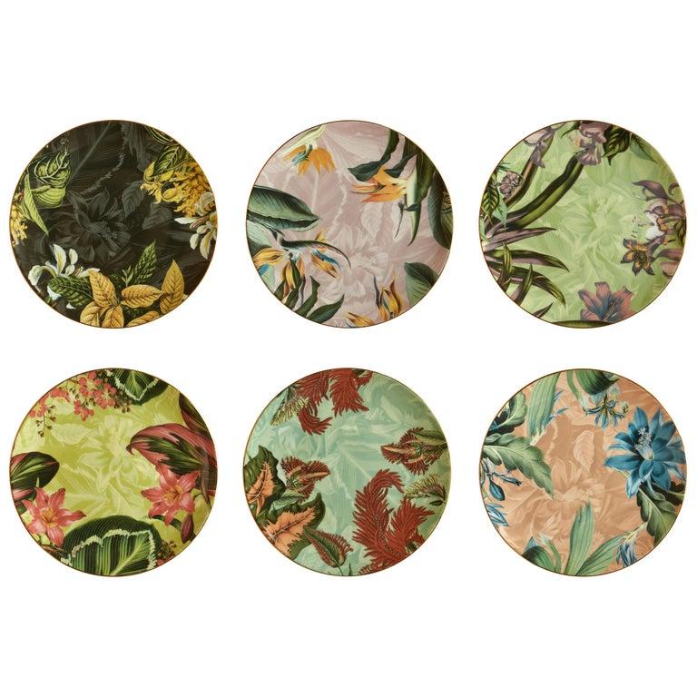Animalia, Six Contemporary Porcelain Dinner Plates with Decorative Design For Sale