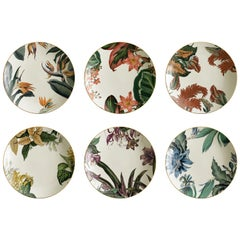 Animalia, Six Contemporary Porcelain Soup Plates with Decorative Design