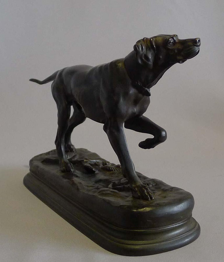 Superb antique patinated bronze model of a pointer by Jules Moingiez. Outstanding cast and in pristine condition this shows a pointer at work in a most skillful way. The pointer alert, head up and with left foreleg raised, listening and about to