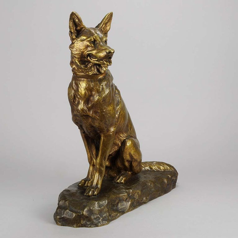 A striking French Animalier gilt bronze study of a seated Alsatian in alert pose with head turned slightly and ears pricked. The surface with excellent naturalistic detail and very fine color, signed L.Riché.