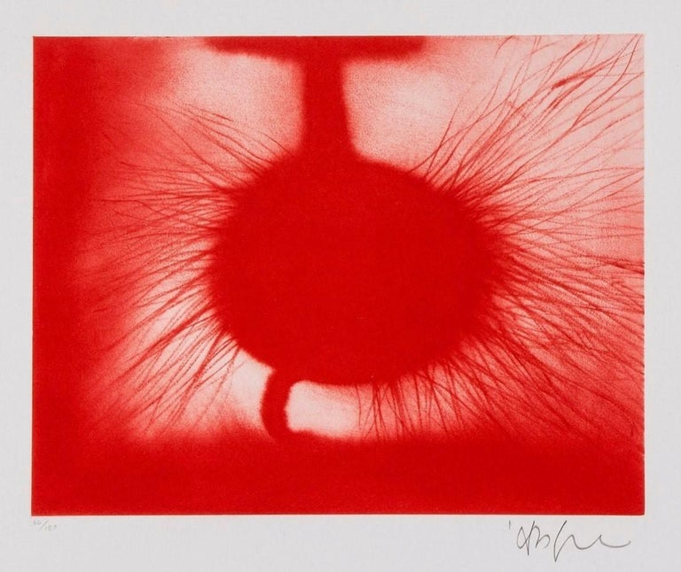 Untitled, 2014, Anish Kapoor - Print by Anish Kapoor