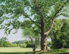 A VERY LARGE TREE ON BAYONET FARM, photo-realism, tree in bloom,