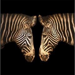 Double Zebras