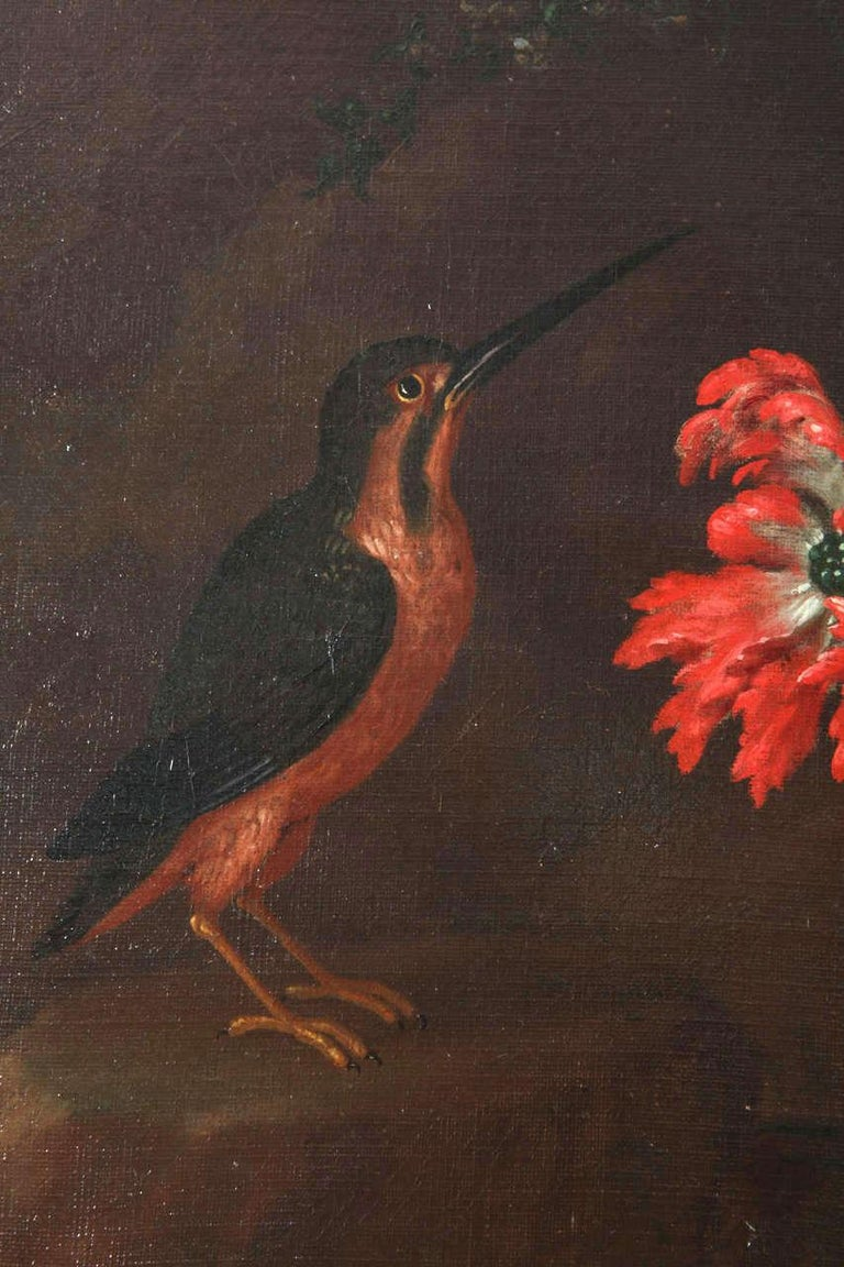 Pair of Exceptional Italian Still Life  Paintings of Flowers  18th century For Sale 9