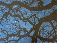 Anna harley, Starry Night, Limited edition skyscape print