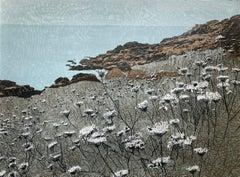 Cornish Coastal Path, near Lamorna