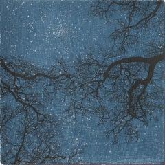 Creation IV, Anna Harley, Limited Edition Print, Starry Night Print