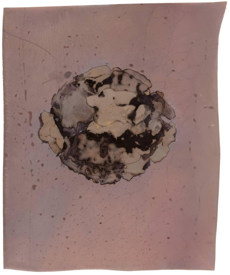 Anne Arden McDonald - Enzyme Print (Abstract Camera-less Still Life ...