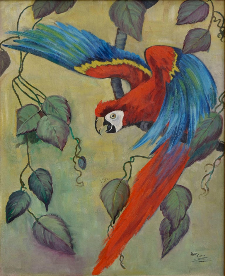 Scarlet Macaw Takes Flight by Anne Green For Sale 1