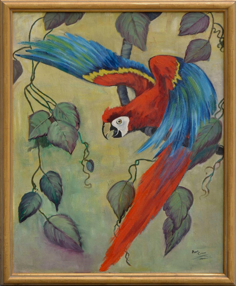 """Painterly image of Scarlet Macaw about to take flight by Anne Green (American, 20th century). Signed by the artist lower right. Possibly mid 1950's vintage. Presented in rustic gold frame, retouched. Image, 30""""H x 24""""W."""