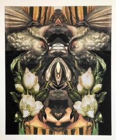Los Angeles Contemporary Digital Collage Fine Art Iris Print Signed ltd ed.