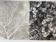 """""""Seasons"""" (Flower Series) by Anne Muller, Emulsion transfer on paper, 2020"""