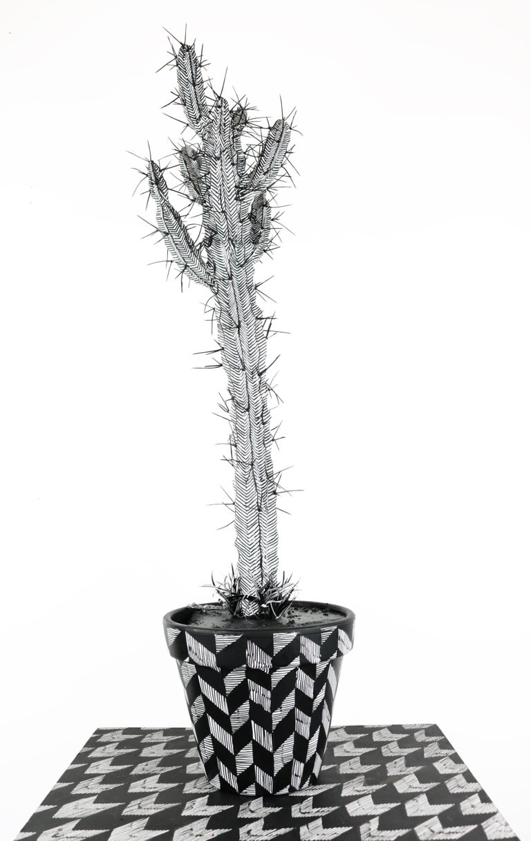 Contemporary Conceptual Cactus Sculpture Plant Drawing Pink Female artist NYC For Sale 1