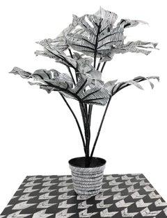 Contemporary Conceptual Plant Sculpture Plant Drawing unique Female artist NYC
