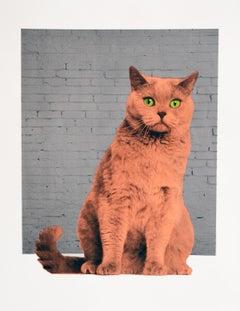 Everybody Wants To Be A Cat, Anne Storno, Surrealist Art, Pop Art, Street Art