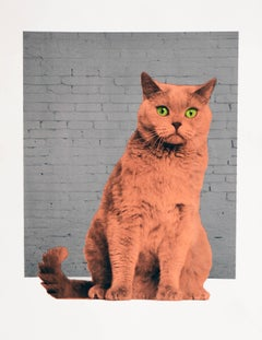 Everybody wants to be a Cat BY ANNE STORNO, Limited Edition Animal Print