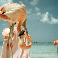 'Flamingo 1', Colourful fun fashion photographic print