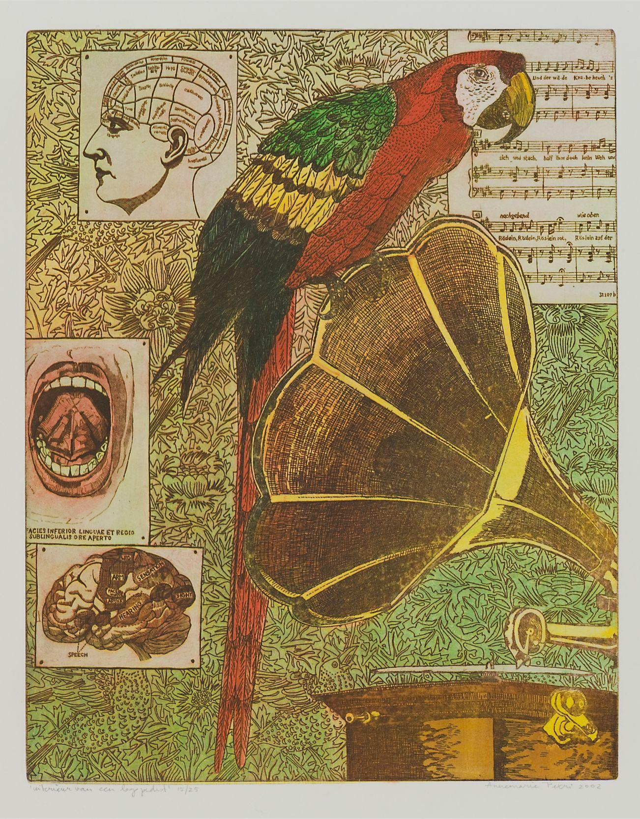 "Annemarie Petri - ""Interior of a Logopedist"" - parrot bird - edition size 25"