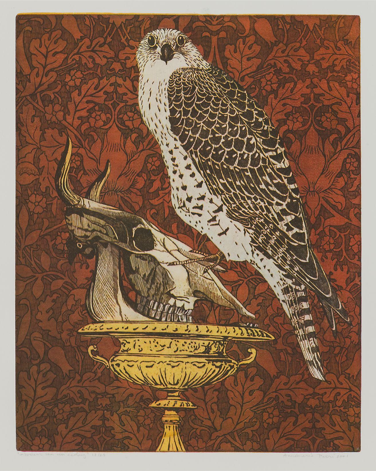 "Annemarie Petri - ""Interior of an Ecologist"" - goshawk bird - edition size 25"