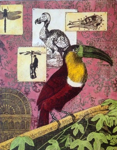 Interior of an ornithologist
