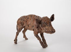 ''Boar Baby'', Contemporary Bronze Sculpture Portrait of a Boar