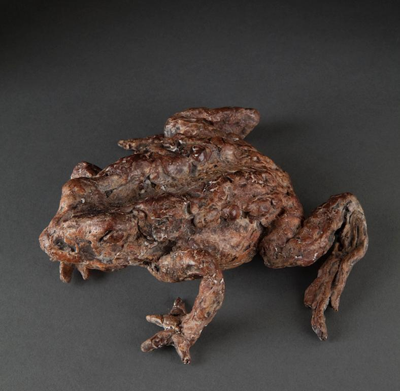 ''Mr. Toad'', Contemporary Bronze Sculpture Portrait of a Toad