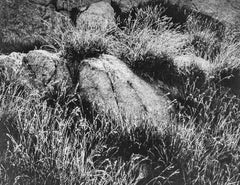 Rocks and Grass in Kings River Sierra, a Photograph by Ansel Adams
