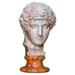 Antinoo Head Sculpture
