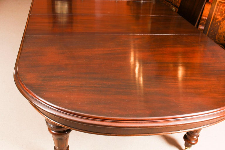 Antique Victorian D-End Mahogany Dining Table 19th Century and 10 Chairs 5