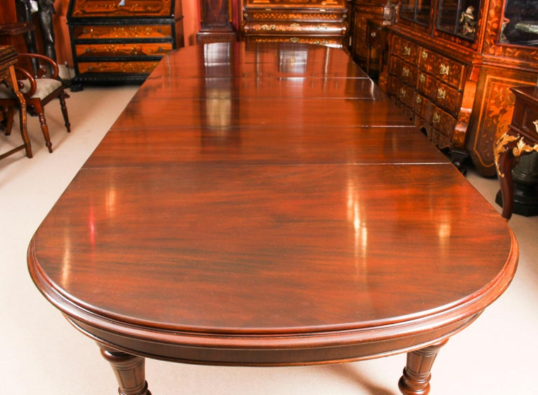 Antique Victorian D-End Mahogany Dining Table 19th Century and 10 Chairs 1